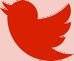 RedMancunian Twitter